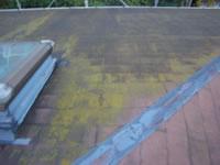 コロニアル屋根にびっしりとついた藻